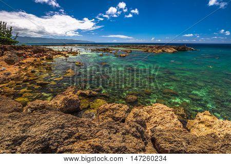 Pupukea Sharks Cove