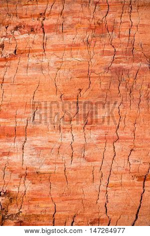Red soil texture background, dried clay surface