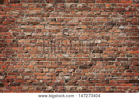 Multi colored brick wall background, textured wall