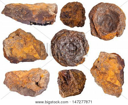 collection from specimens of limonite ore (iron ore bog iron ore brown hematite brown iron ore lemon rock yellow iron ore) isolated on white background poster