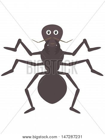Funny Ant Character