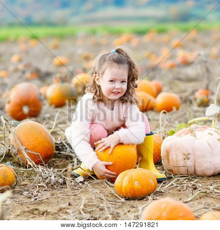 Funny little kid girl having fun with farming on a pumpkin patch. Traditional family festival with children, thanksgiving and halloween concept. Cute farmer with big vegetables. poster