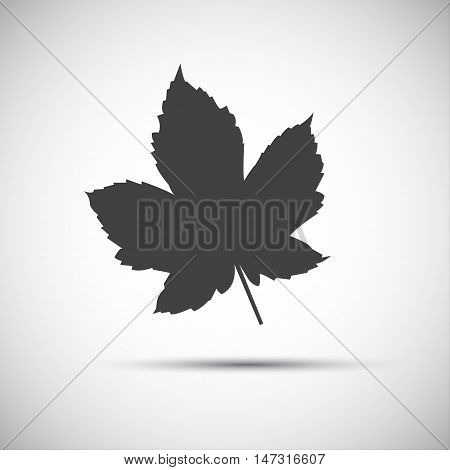 Maple leaf simple grey vector illustration icon