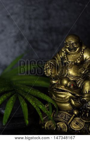 Wet Laughing Buddha with black basalt stones and green leaf on black background