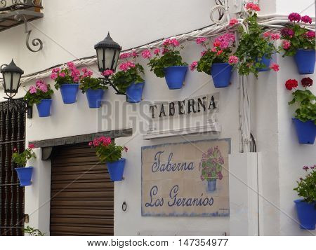 Cordoba, Spain - June 23, 2016: The sign Taberna Los Geranios in Cordoba, Spain. The outer wall of the tavern. Hanging on the wall of blue pot with pink flowers.
