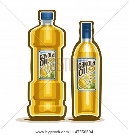 Vector logo 2 yellow plastic and glass Bottle with pure Canola Oil and label, bottles virgin cooking colza oil, container natural organic rapeseed oily liquid with blue cap, closeup isolated on white.