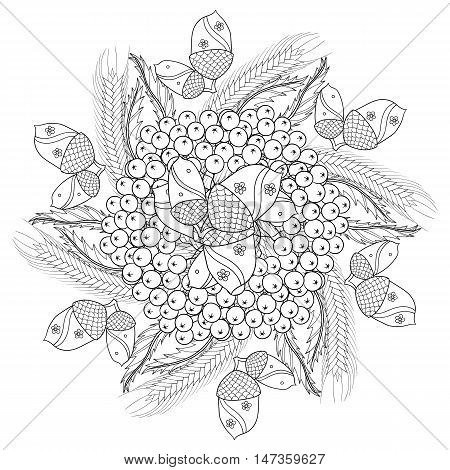 Vector autumn patterned background with oak leaves, Rowan berries, ears of wheat, barley or rye for adult coloring pages. Hand drawn artistic monochrome illustration in ethnic, zentangle style. Doodle design.
