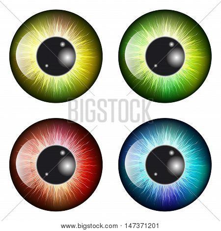 Eye, Pupil, Iris, Vector Symbol Icon Design. Beautiful Illustration Isolated On White Background