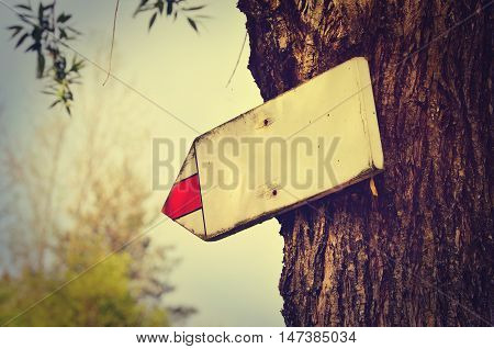 Wooden tourist sign on a tree pointing the way with space for your text in vintage style.