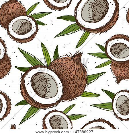 Seamless vector pattern of coconuts on a white background. Wrapping paper. Beautiful background for your design. Sweet and healthy tropical fruit nut.