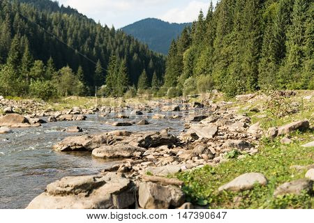Summer mountain landscape. Mountain stream in High Tatra mountains