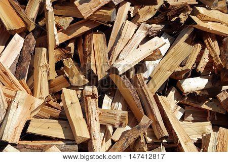 Pile of Firewood in Lech Valley. Tirol. Austria