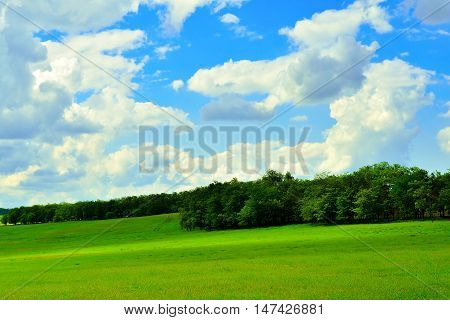 Beautiful landscape. Blue sky with clouds and green meadows with forest belts