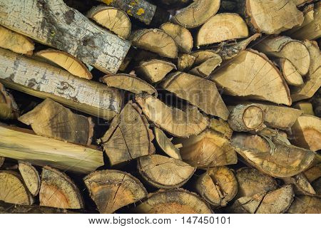 Log cabin texture. Barn natural debarked textured wall background with place for copy space
