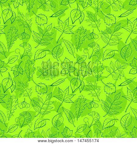 Seamless Background, Green Summer Leaves Contours and Silhouettes Oak, Iberian Oak, Raspberry, Willow, Liquidambar, Hawthorn, Aspen, Ginkgo Biloba, Elm Karagach, Birch, Ash, Chestnut, Sambucus. Vector
