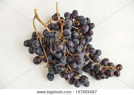 Fresh sweet black grapes. Local grapes got ripen at the end of August, called Yazır Grapes.