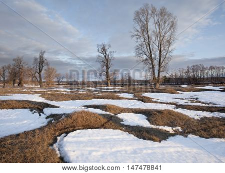 snowmelt in the vast fields in early spring at sunset on a cloudy day poster