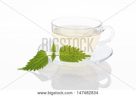 Stinging nettle tea. Fresh nettle leaves and nettle tea in glass. Alternative medicine.