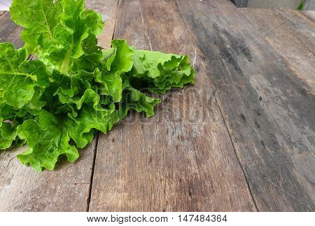 chinese cabbage organic vegetables on a wooden table Select focus with shallow depth of field and copy space background.