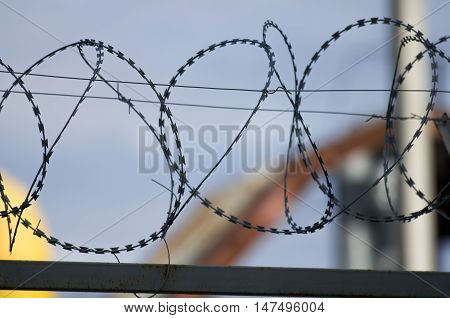 Hanks of a barbed wire. The protected enterprise territory.