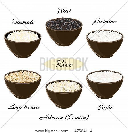 Different types of rice Basmati, wild, jasmine, long brown, arborio, sushi in ceramic bowls Vector illustration EPS 10.