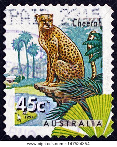 AUSTRALIA - CIRCA 1994: a stamp printed in Australia shows Cheetah Acinonyx Jubatus Big Cat circa 1994