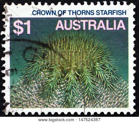 AUSTRALIA - CIRCA 1986: a stamp printed in Australia shows Crown of Thorns Starfish Acanthaster Planci Starfish circa 1986