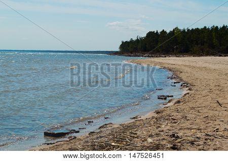 Beach with logs in Kolka. Baltic sea