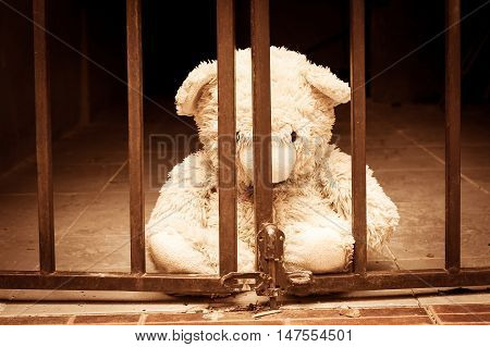 white teddy bear in jail vintage tone