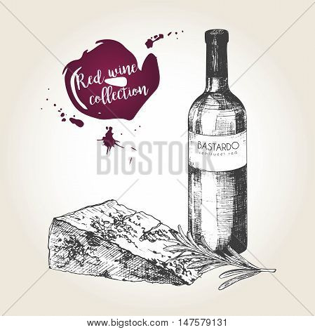 Vector set of red wine collection. Engraved vintage style. Bottle cheese and rosemary. Isolated on grunge background. Deorated with lettering and blots. Use for restaurant cafe store food menu design.