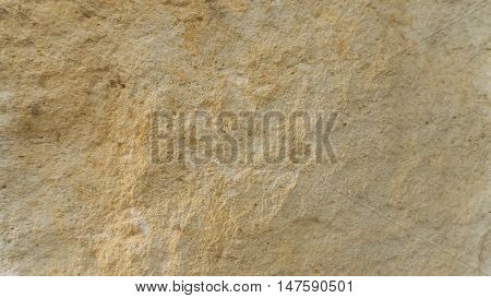 Diplopora Dolomite Rock Layers. usable as texture or background