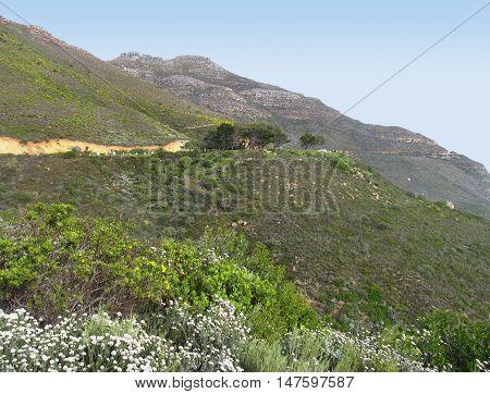 Chapmans Peak, Cape Town South Africa
