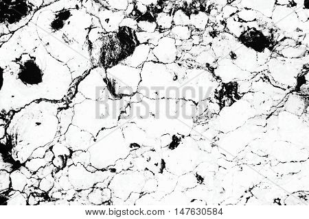 Invert Marble Texture White And Black Background,the Marble Texture White And Black Line,marble Text