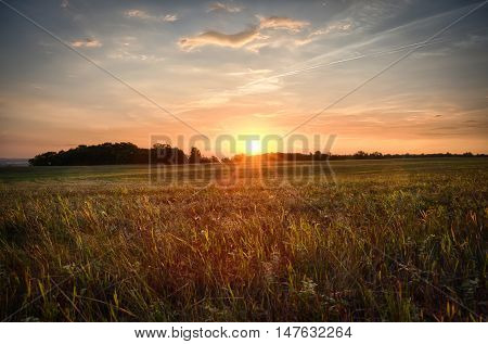 Beautiful bright saturated views of nature on a background of sunset