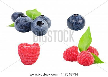 Collection of Black berryand red berry on background