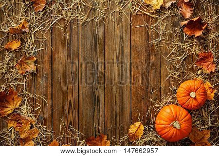 Harvest or Thanksgiving background with gourds and straw on a rustic wooden table