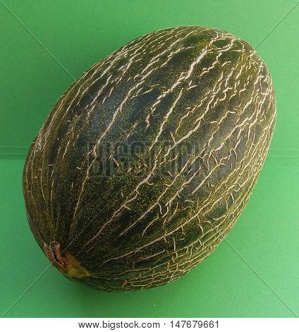 Santa Claus Melon