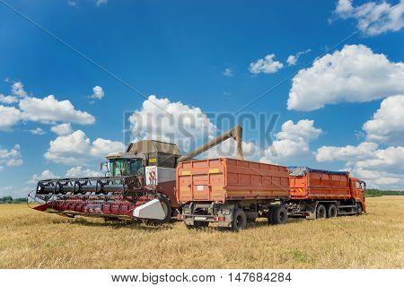 Loading threshed grain from the combine into a transport truck in the middle of wheat field under a blue sky with beautiful white clouds