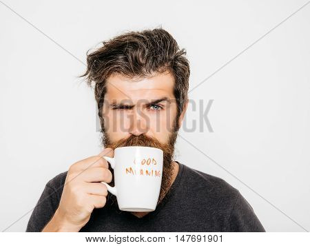 handsome bearded man with stylish hair beard and mustache on serious face in shirt holding white cup or mug with good morning text drinking tea or coffee in studio on grey background poster