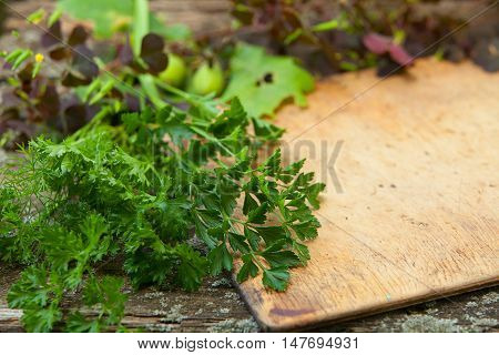 Raw Herbs On L Table