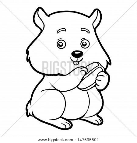 Coloring book for children, animal and pets: Hamster