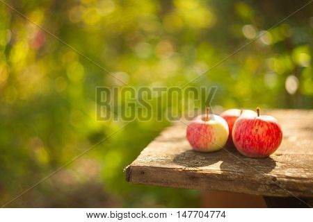 tasty delicious red apples on a wooden table in rustic style