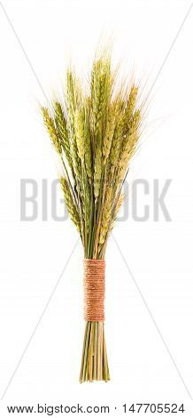 Sheaf of cereals isolated on white background