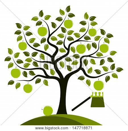 vector apple tree and fruit picker isolated on white background