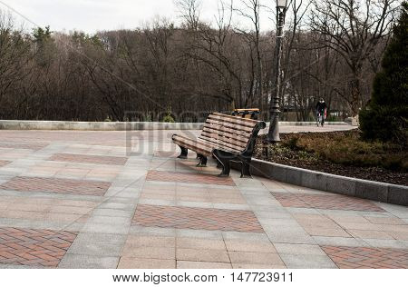 bench in the park in the late autumn