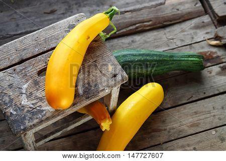 Zucchini and cucurbit. Autumn harvest in a home pantry