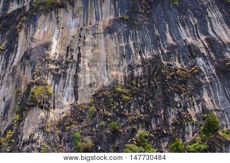 Rock reliefs thai stone texture beautiful monumentally