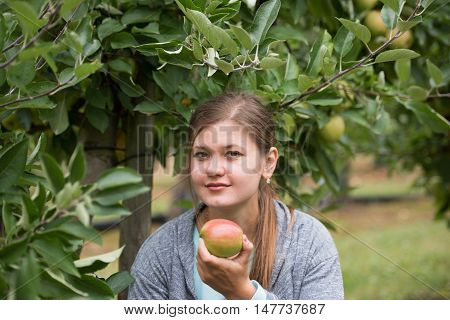 young girl picking up green apples between apple trees