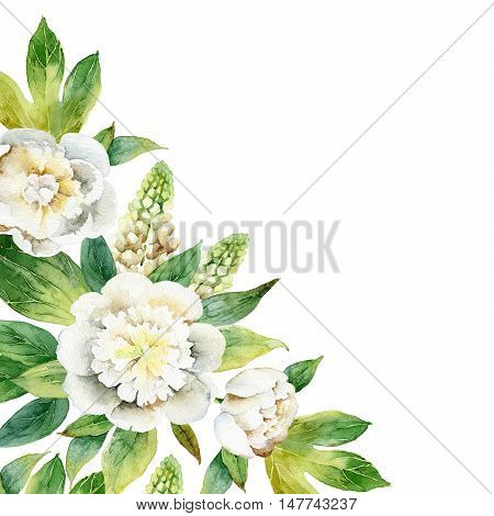 Watercolor floral corner composition with white peonies and lupine