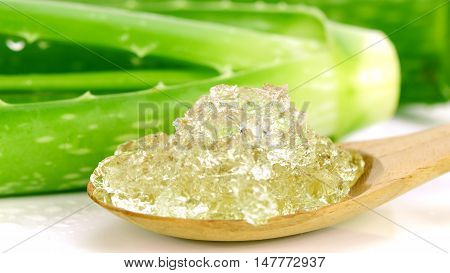 Pure Aloe Vera Gel on Wooden Spoon. Aloe Vera gel almost use in food medicine and beauty industry.
